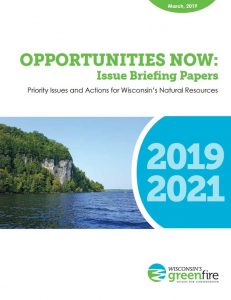 opportunities-now-issue-brief-cover
