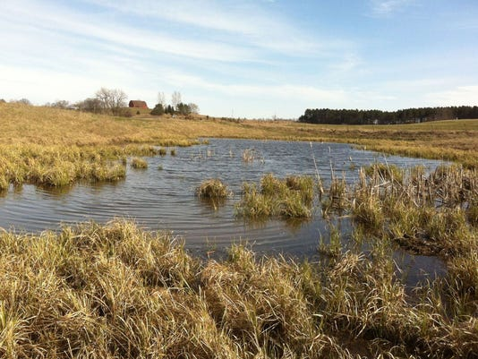 Wetlands such as this one on a farm in St. Croix County would lose protection under a bill being considered by the Wisconsin Legislature. (Photo: Tracy Hames)